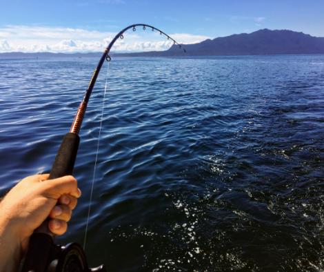 whistler fishing guide